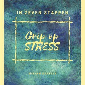 E-book In zeven stappen grip op stress